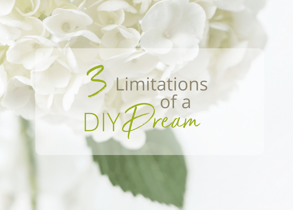 3 Limitations of a DIY Dream [and what to do about it]